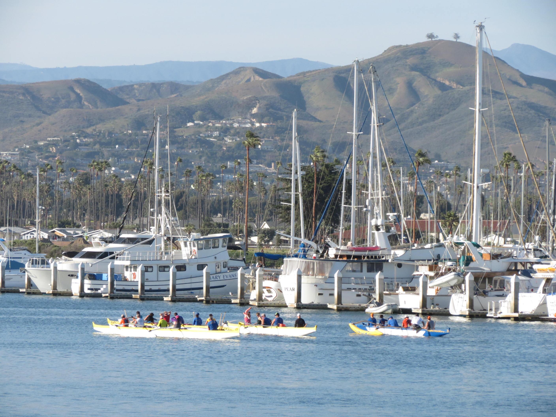 People peddling kayaks